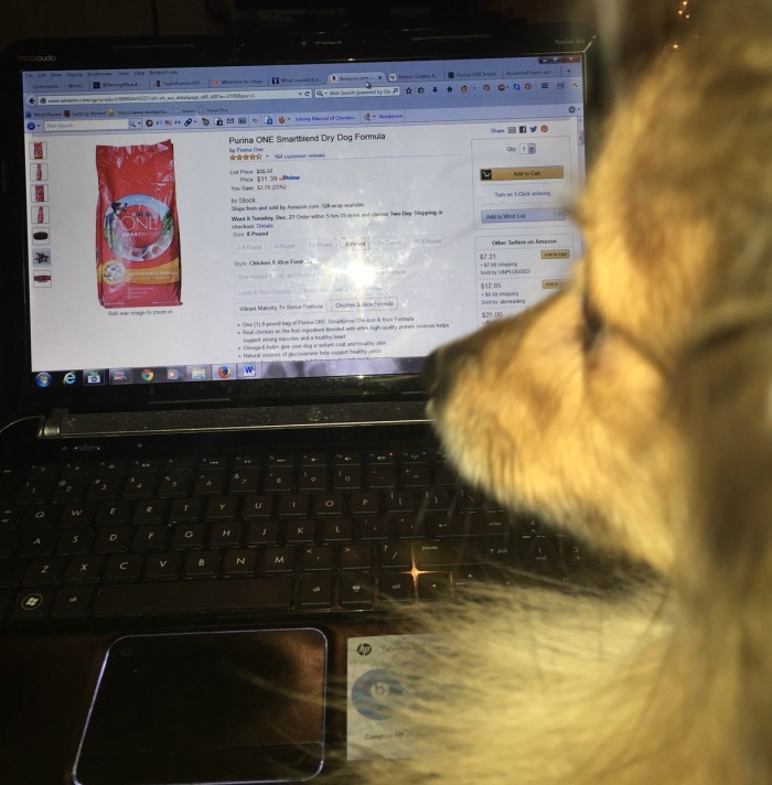 Marley Watching Computer