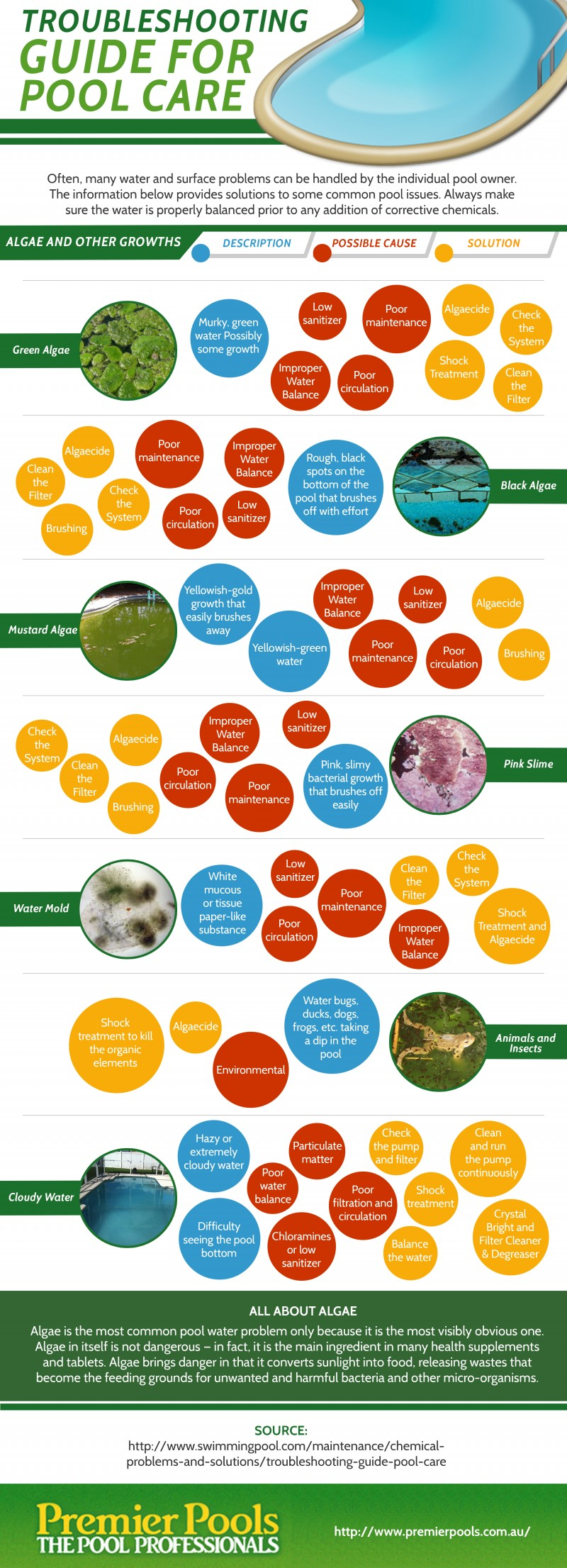 Troubleshooting Guide for Pool Care Infographic