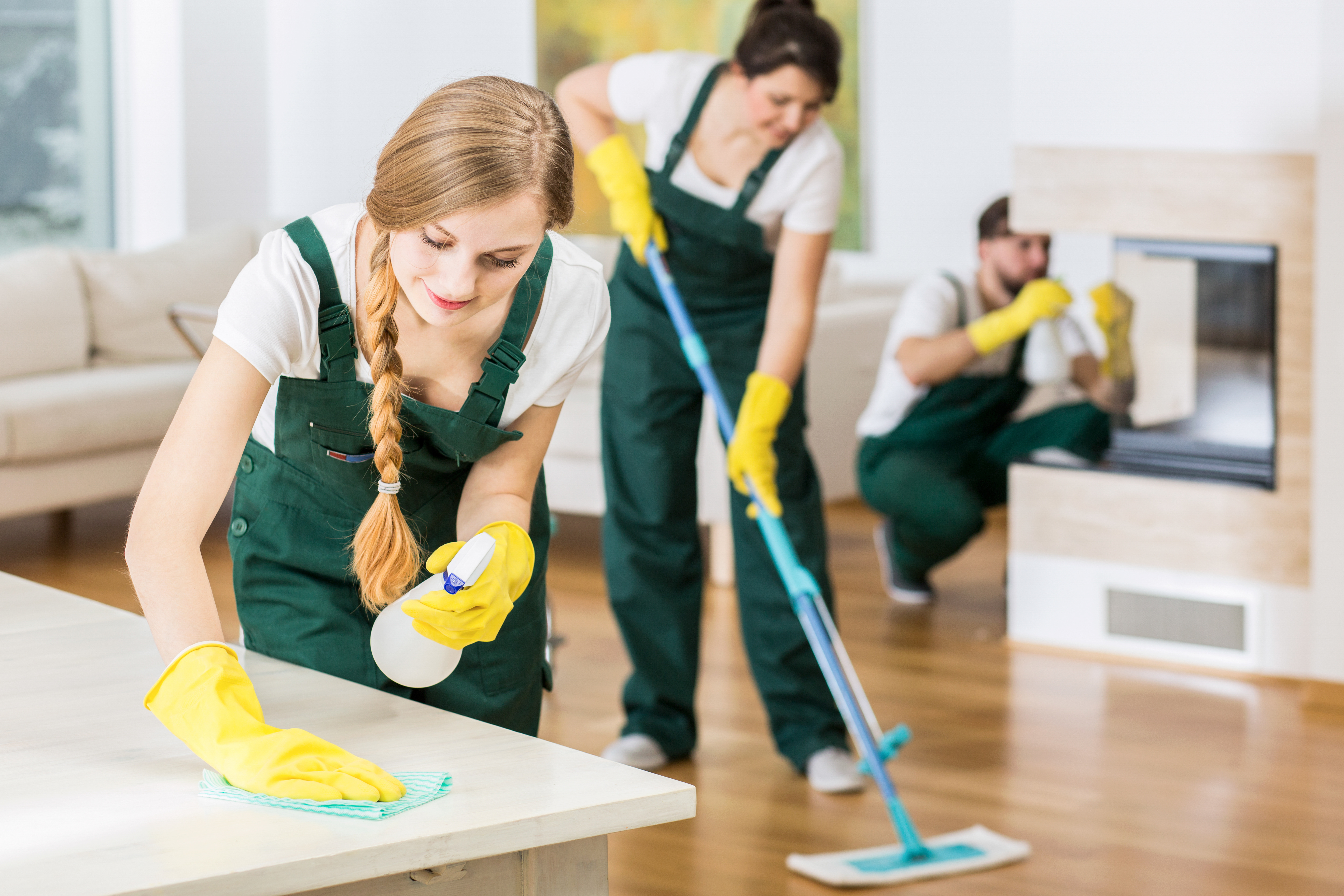 Professional Clean