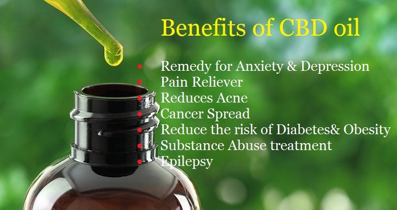 What CBD Oil Can Do & How it May Help