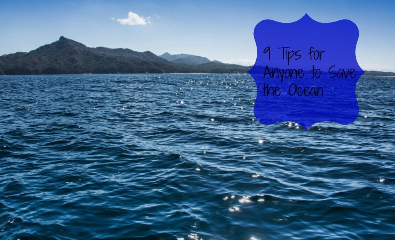 9 Tips for Anyone to Save the Ocean