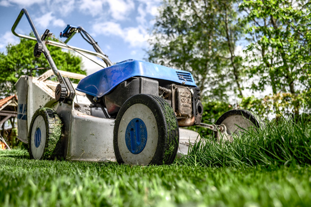 5 Ways to Get Your Garden Ready For The Spring