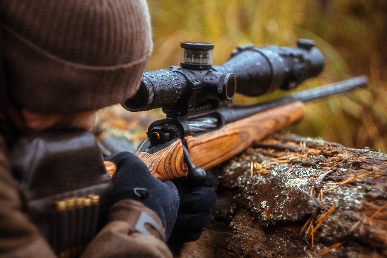 Interested in Hunting? 5 Helpful Ideas on Where to Start