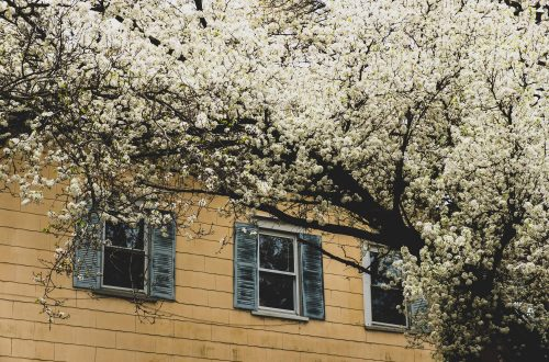 4 Spring Jobs To Get Your Home Ready For The New Season