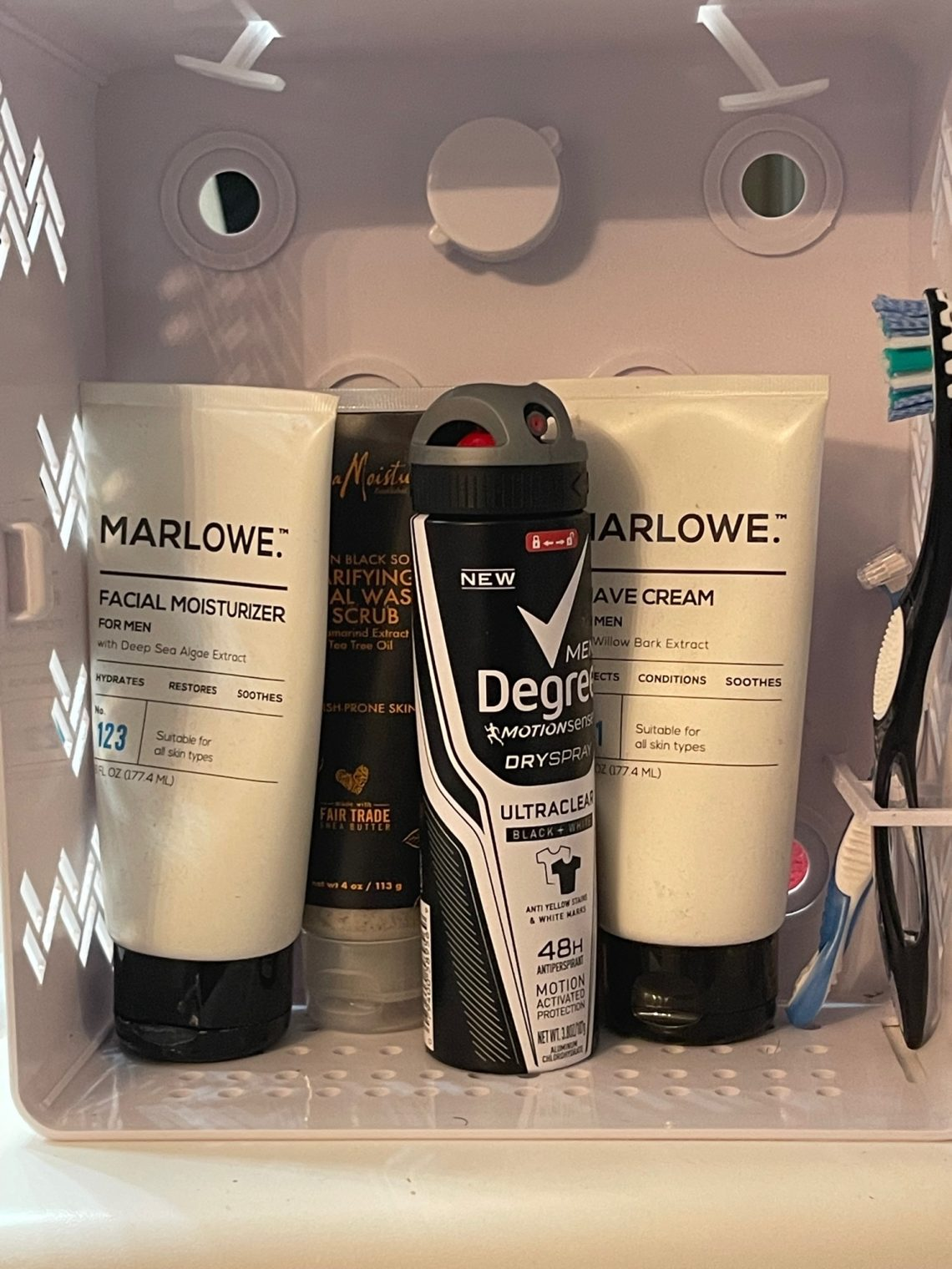 3 Reasons Why You Should Purchase the Shower Caddy Locker